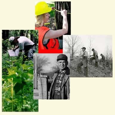 [Photographs] Historic pictures of FIA employees collecting samples on hillside; and another with man holding FIA plot marker.  Two other pictures of FIA employees; one with man collecting samples and another with woman measuring tree's diameter.