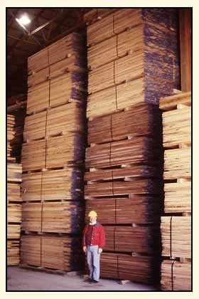 [Photograph] Man standing in front of stacks of wood.
