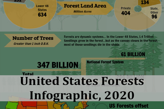 2020 U.S. Forests Trillion Trees Infographic
