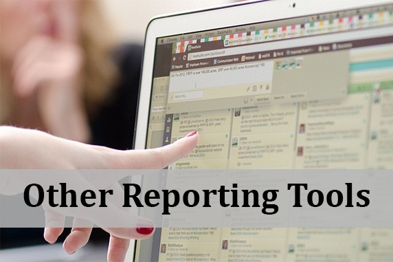 Other Reporting Tools
