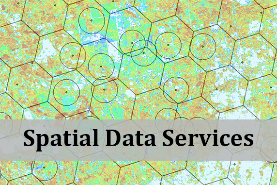Spatial Data Services